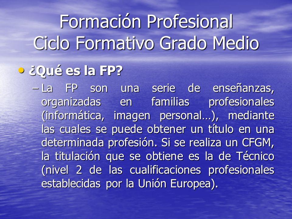 Formación Profesional Ciclo Formativo Grado Medio