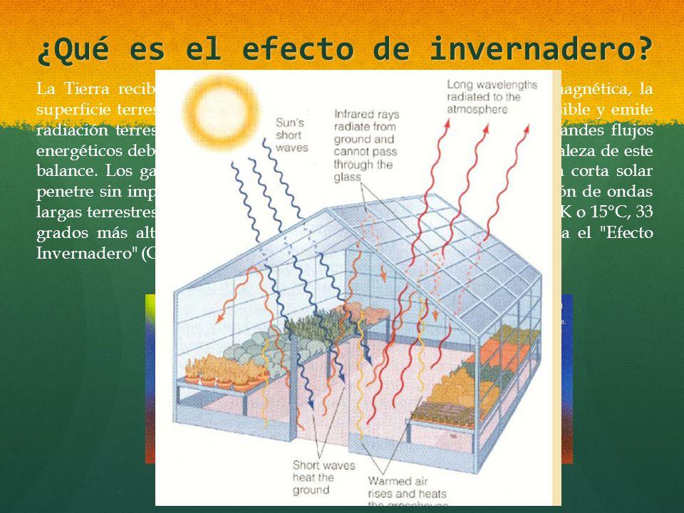 ¿Qué es el efecto de invernadero