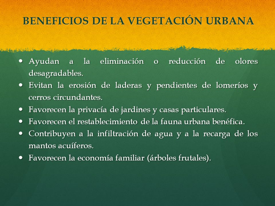 BENEFICIOS DE LA VEGETACIÓN URBANA