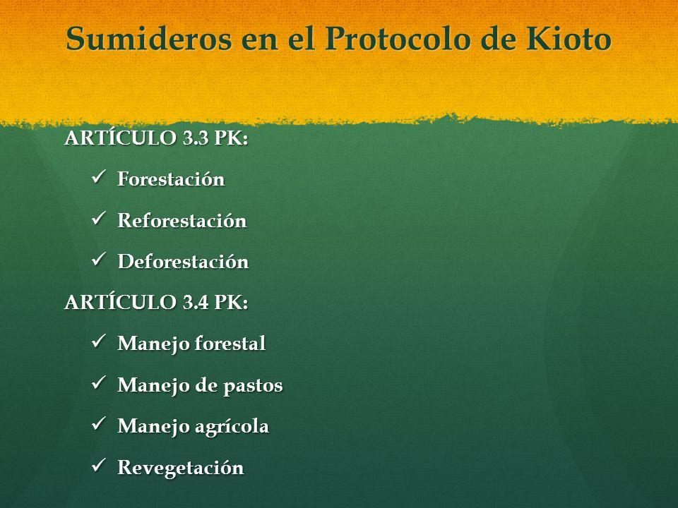 Sumideros en el Protocolo de Kioto