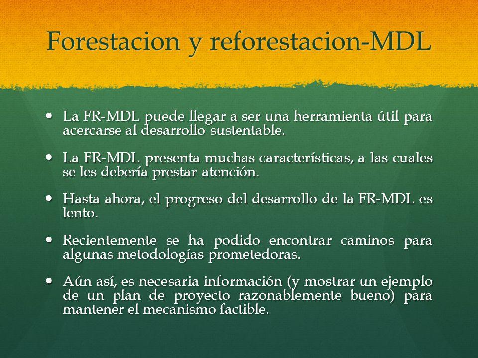 Forestacion y reforestacion-MDL