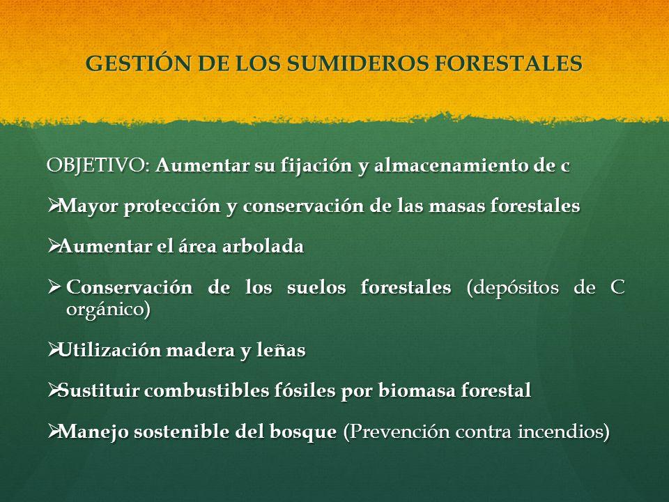 GESTIÓN DE LOS SUMIDEROS FORESTALES