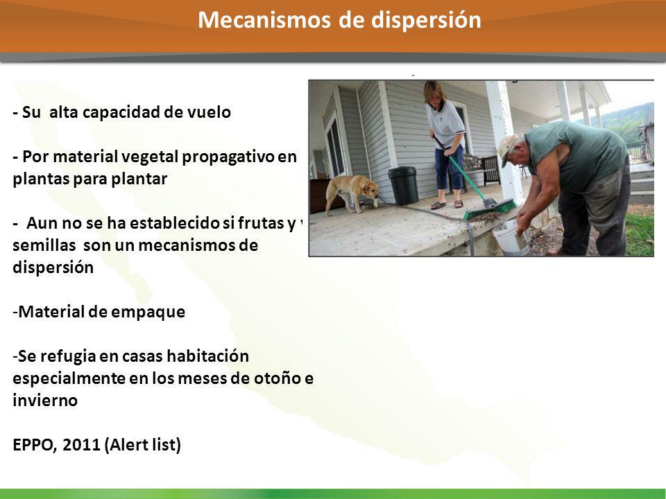 Mecanismos de dispersión
