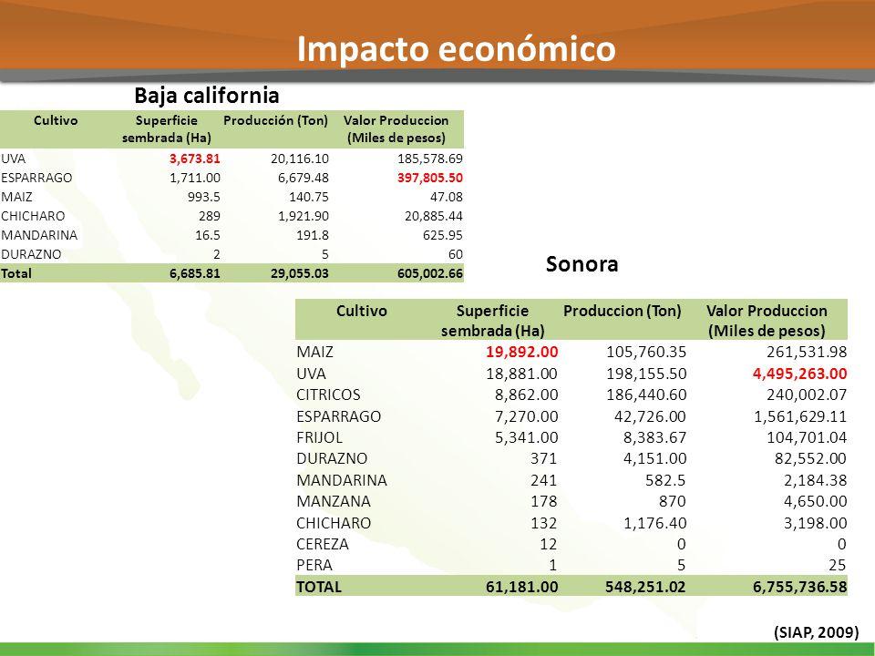 Impacto económico Baja california Sonora Cultivo