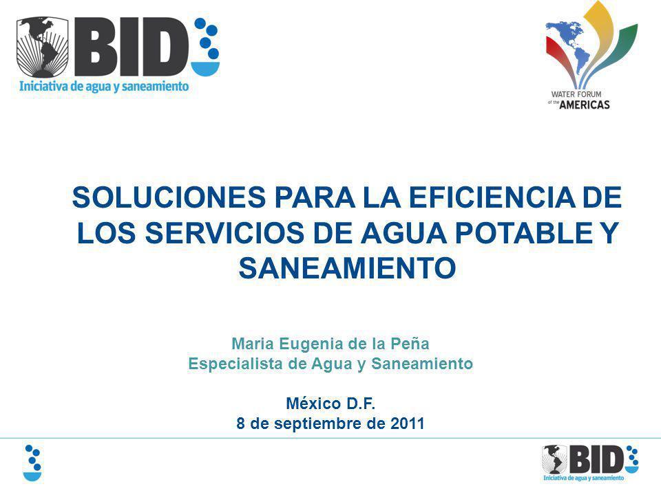 Maria Eugenia de la Peña Especialista de Agua y Saneamiento