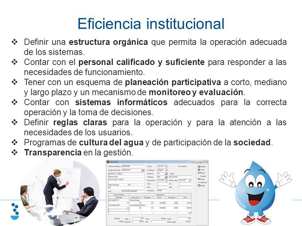 Eficiencia institucional