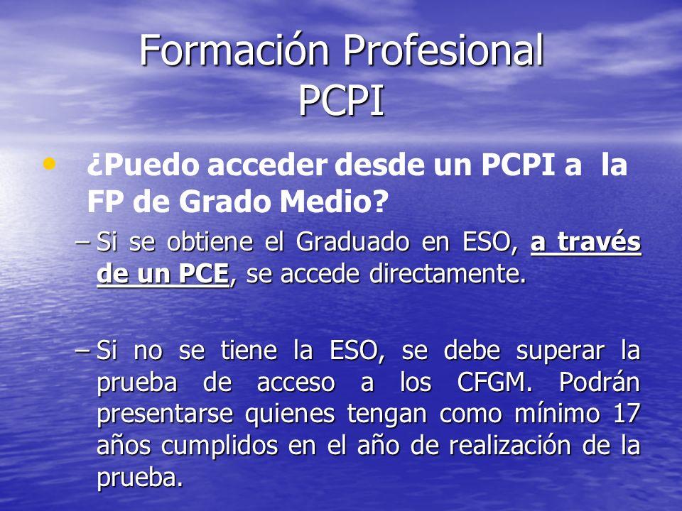 Formación Profesional PCPI