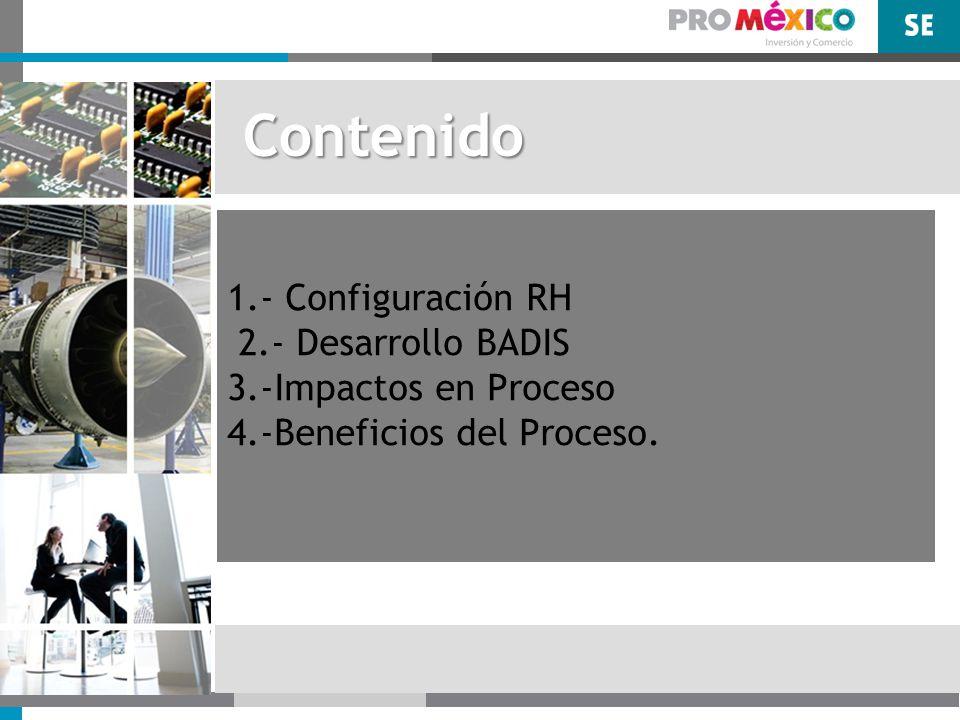 Contenido 1.- Configuración RH 2.- Desarrollo BADIS 3.-Impactos en Proceso 4.-Beneficios del Proceso.
