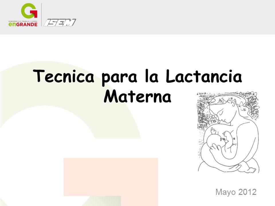 Tecnica para la Lactancia Materna