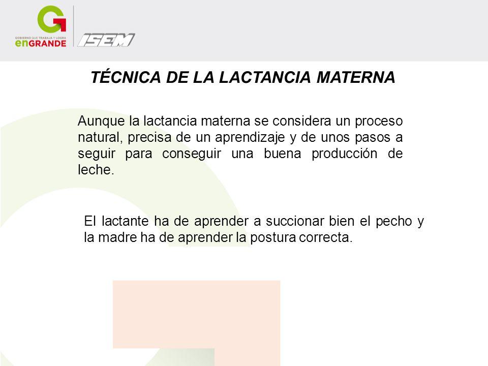 TÉCNICA DE LA LACTANCIA MATERNA