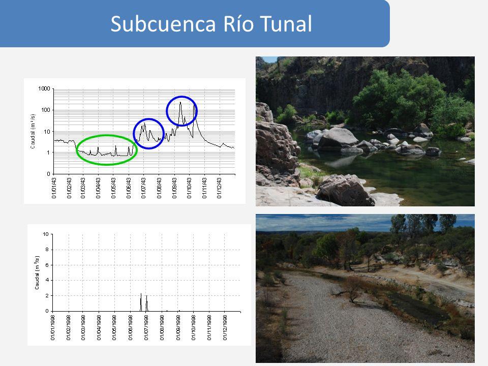 Subcuenca Río Tunal