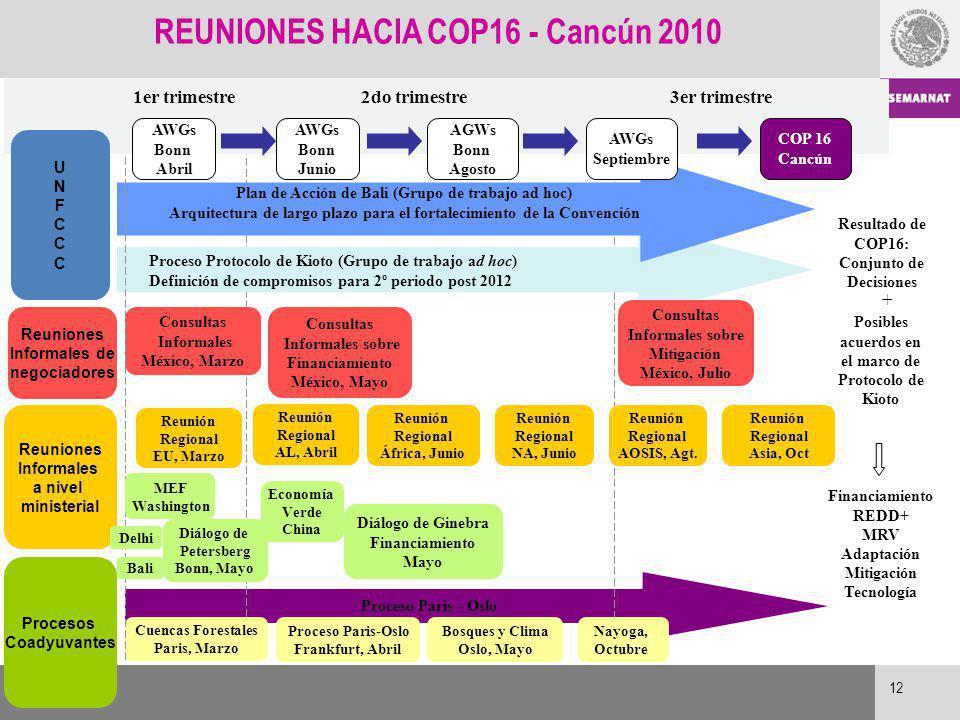 REUNIONES HACIA COP16 - Cancún 2010