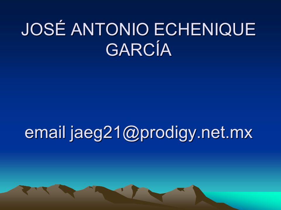 JOSÉ ANTONIO ECHENIQUE GARCÍA email jaeg21@prodigy.net.mx