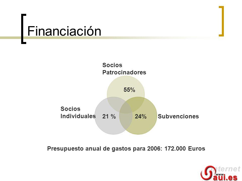 Financiación Socios Individuales 21 % 24% Subvenciones