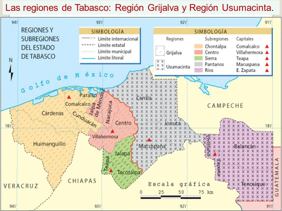 Las regiones de Tabasco: Región Grijalva y Región Usumacinta.