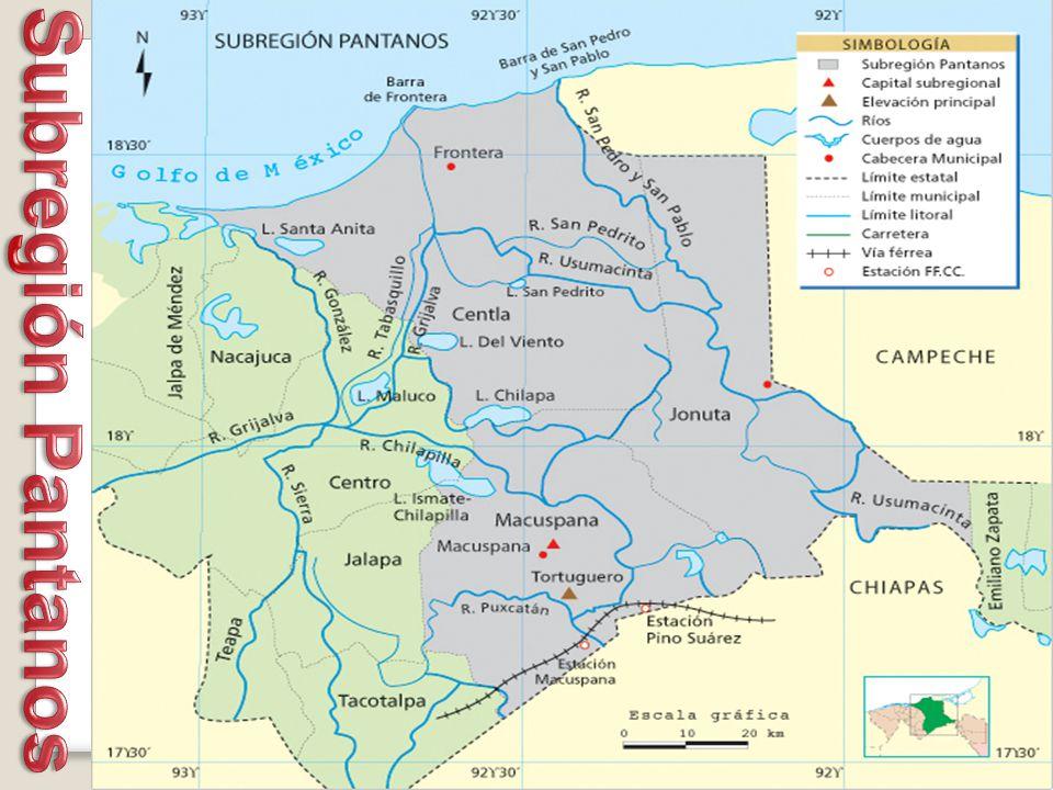 Subregión Pantanos