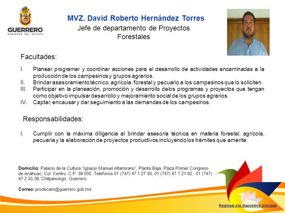 Jefe de departamento de Proyectos Forestales