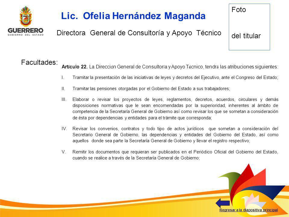 Directora General de Consultoría y Apoyo Técnico