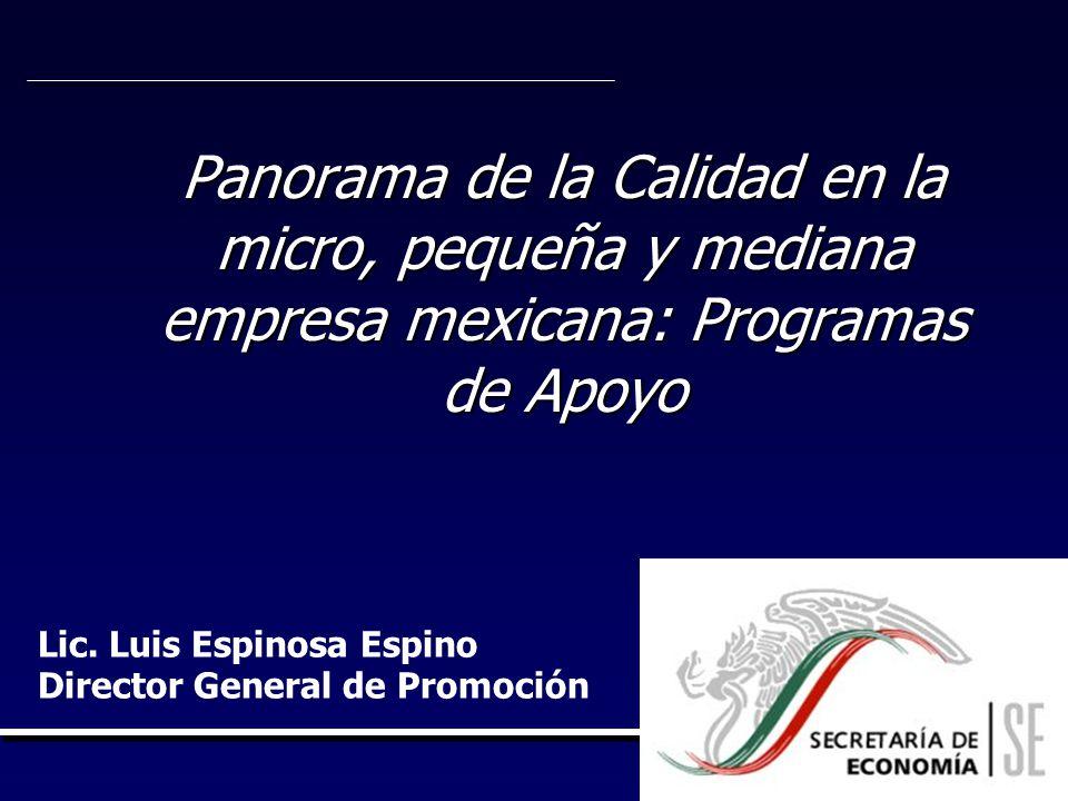 Panorama de la Calidad en la micro, pequeña y mediana empresa mexicana: Programas de Apoyo