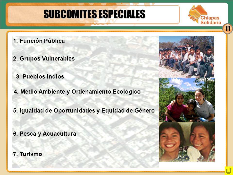SUBCOMITES ESPECIALES