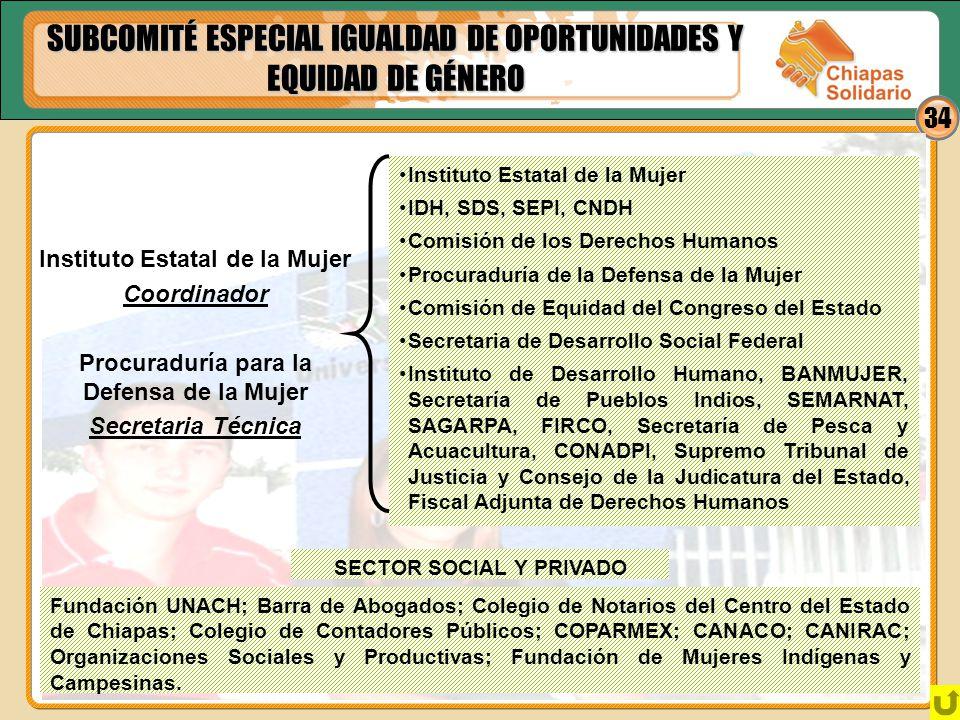 SUBCOMITÉ ESPECIAL IGUALDAD DE OPORTUNIDADES Y EQUIDAD DE GÉNERO