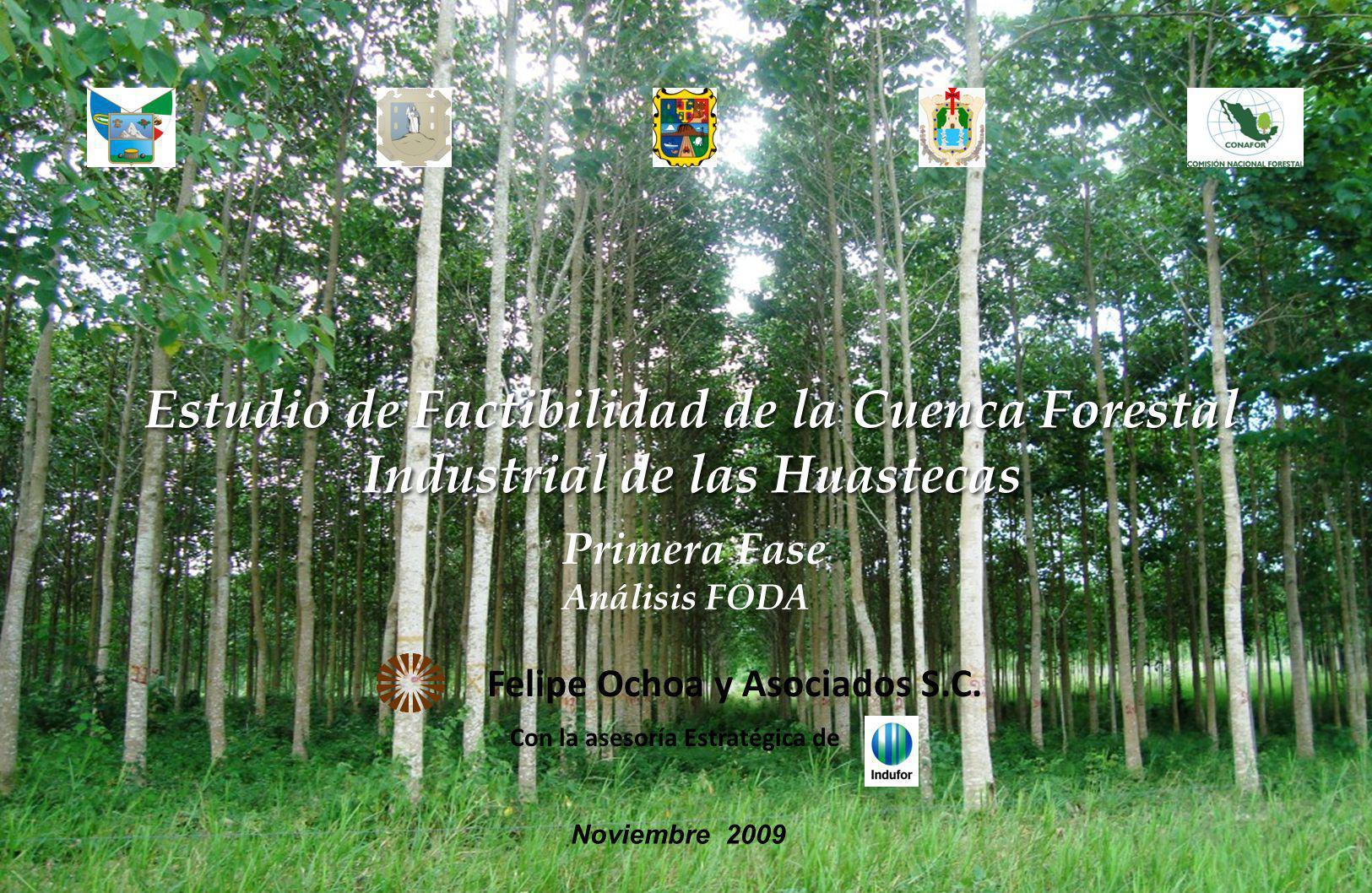 Análisis FODA de Recurso y Potencial Forestal (cap. III, IV, VI y X)