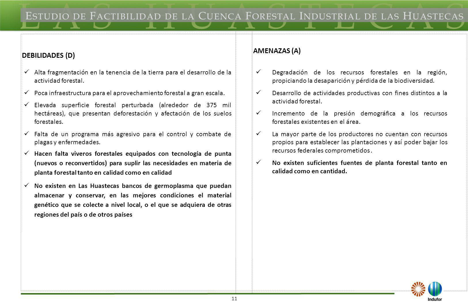 FODA REGIONAL DE LAS ACTIVIDADES FORESTALES EN LA REGIÓN