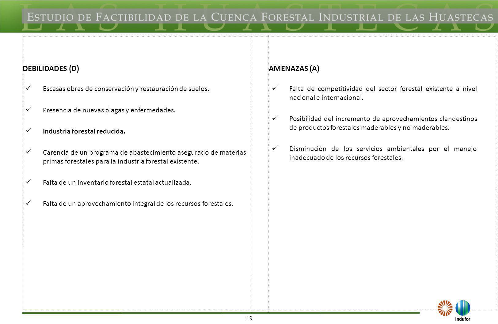 VERACRUZ FORTALEZAS (F) OPORTUNIDADES (O)