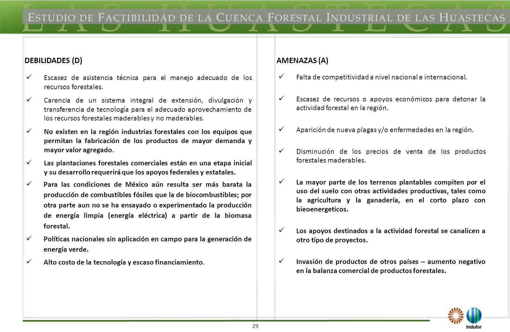 OPORTUNIDADES (O) VERACRUZ FORTALEZAS (F)