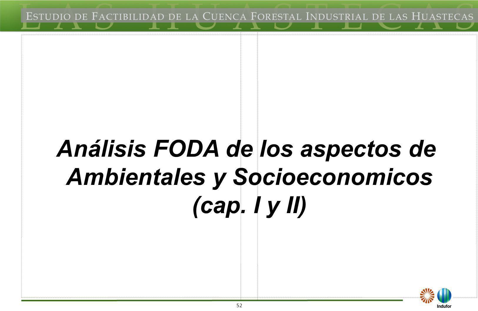 An Lisis Foda De Recurso Y Potencial Forestal Cap Iii Iv Vi Y  # Analisis Dafo Muebles