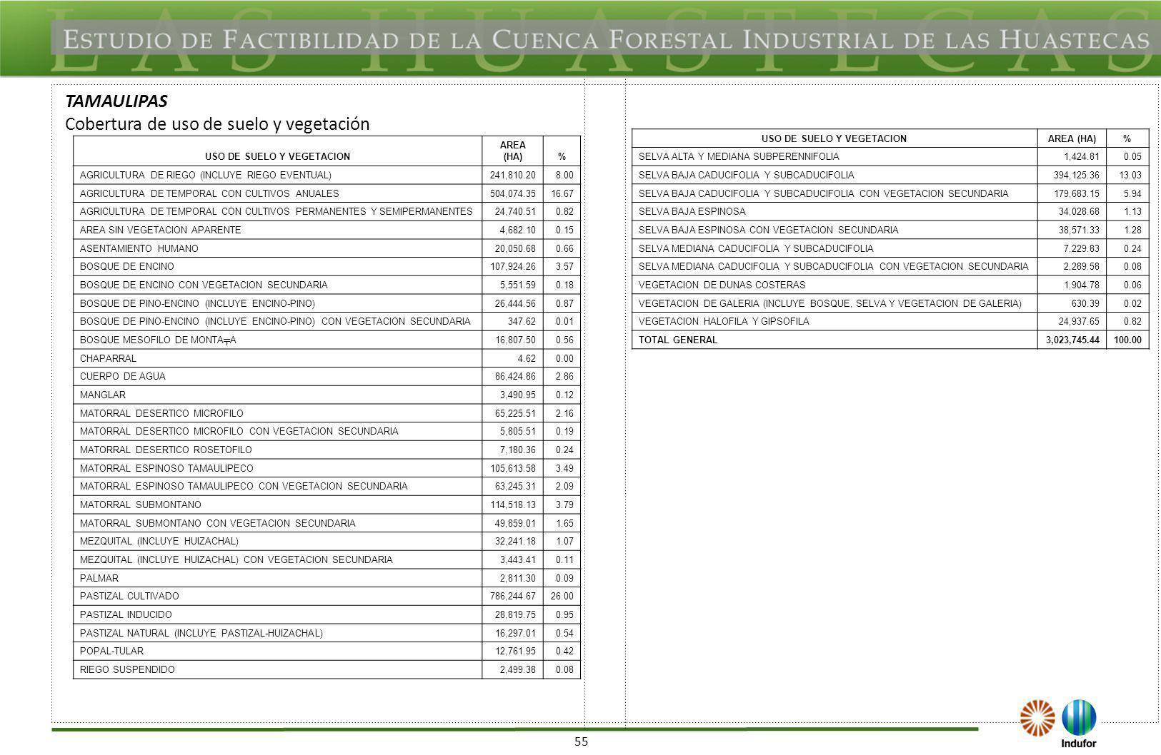 USO DE SUELO Y VEGETACION