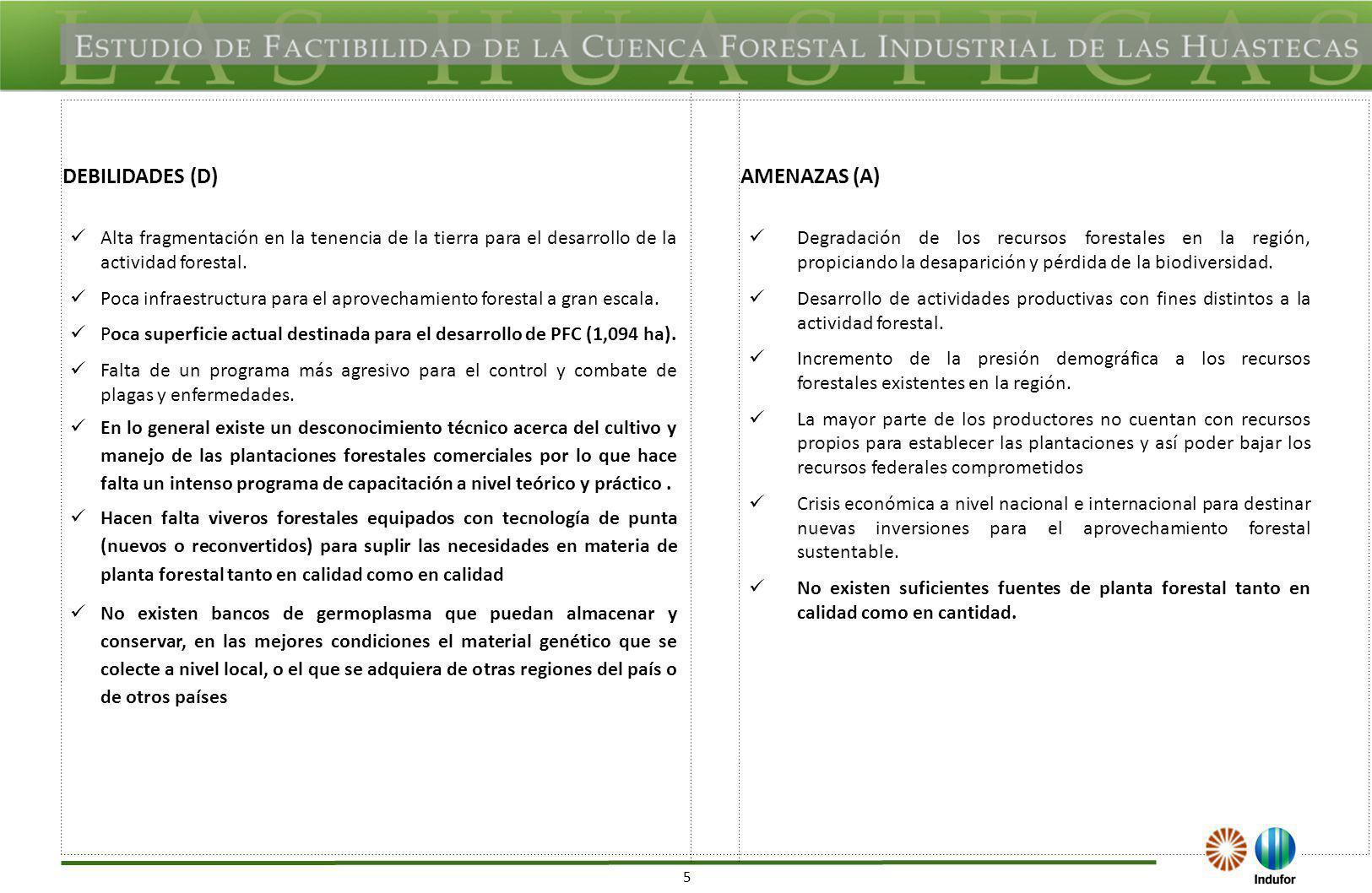 SAN LUIS POTOSÍ OPORTUNIDADES (O) FORTALEZAS (F)