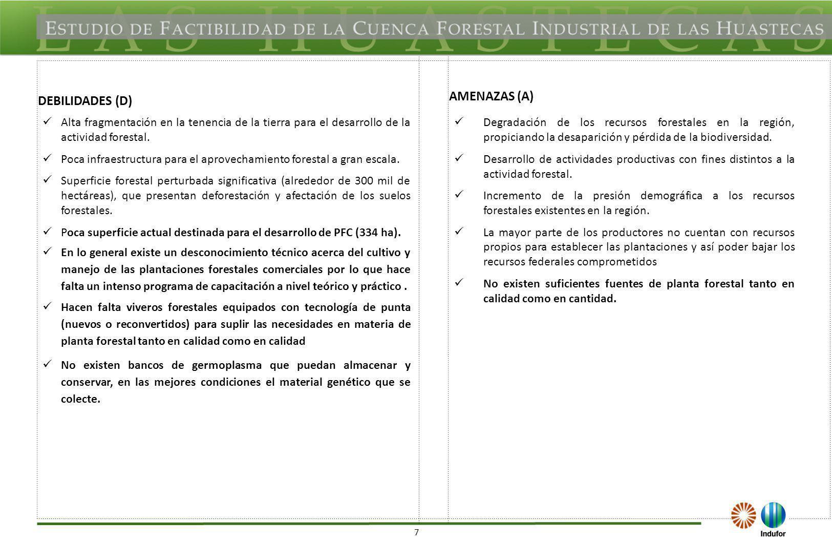 TAMAULIPAS OPORTUNIDADES (O) FORTALEZAS (F)