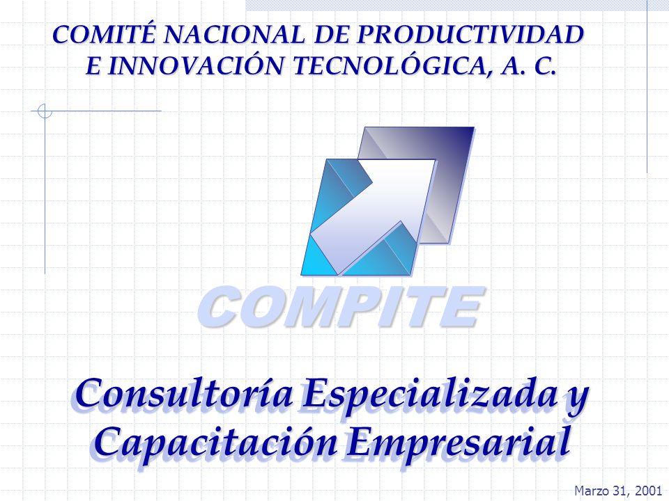 COMPITE Consultoría Especializada y Capacitación Empresarial