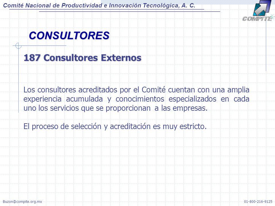 CONSULTORES 187 Consultores Externos