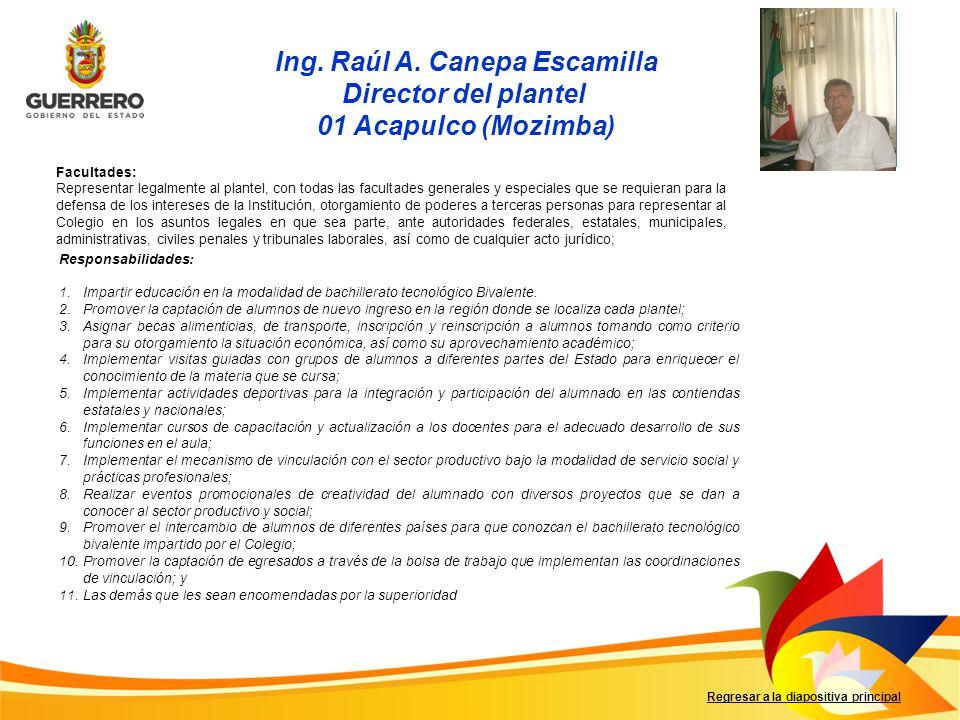 Ing. Raúl A. Canepa Escamilla