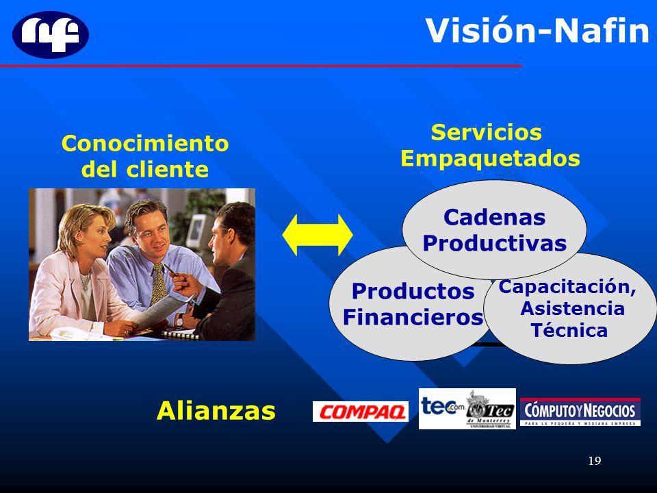 Visión-Nafin Alianzas Servicios Conocimiento Empaquetados del cliente