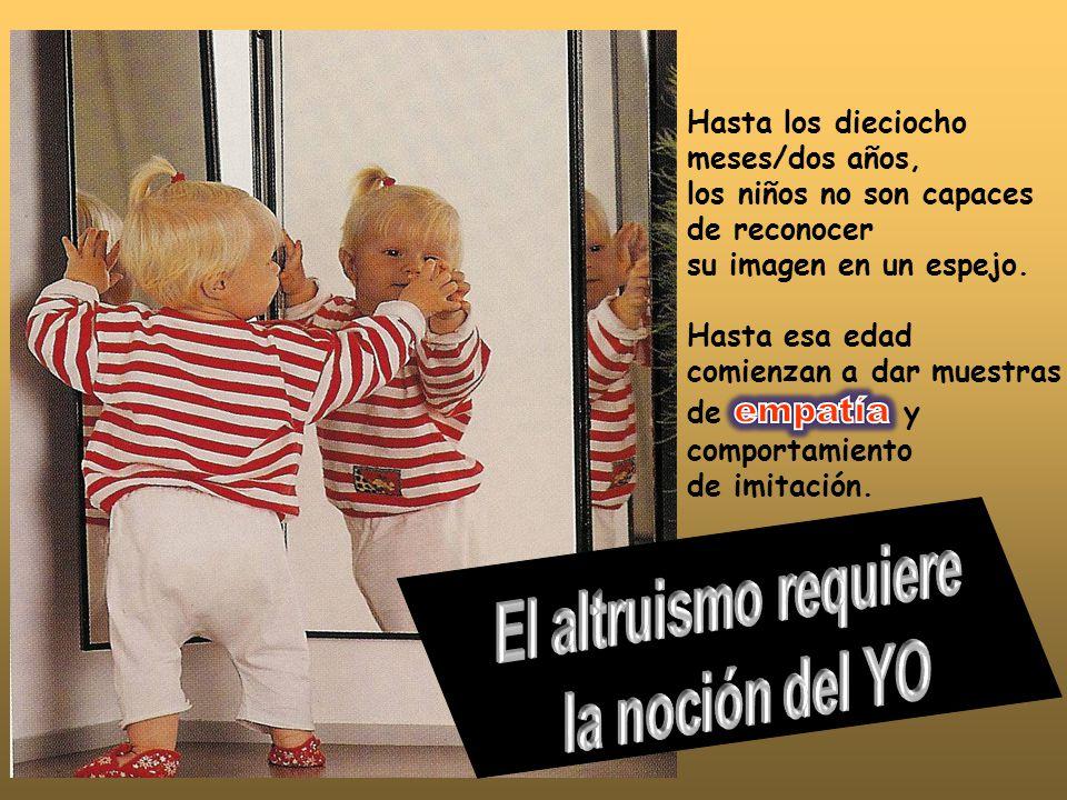 los niños no son capaces de reconocer su imagen en un espejo.