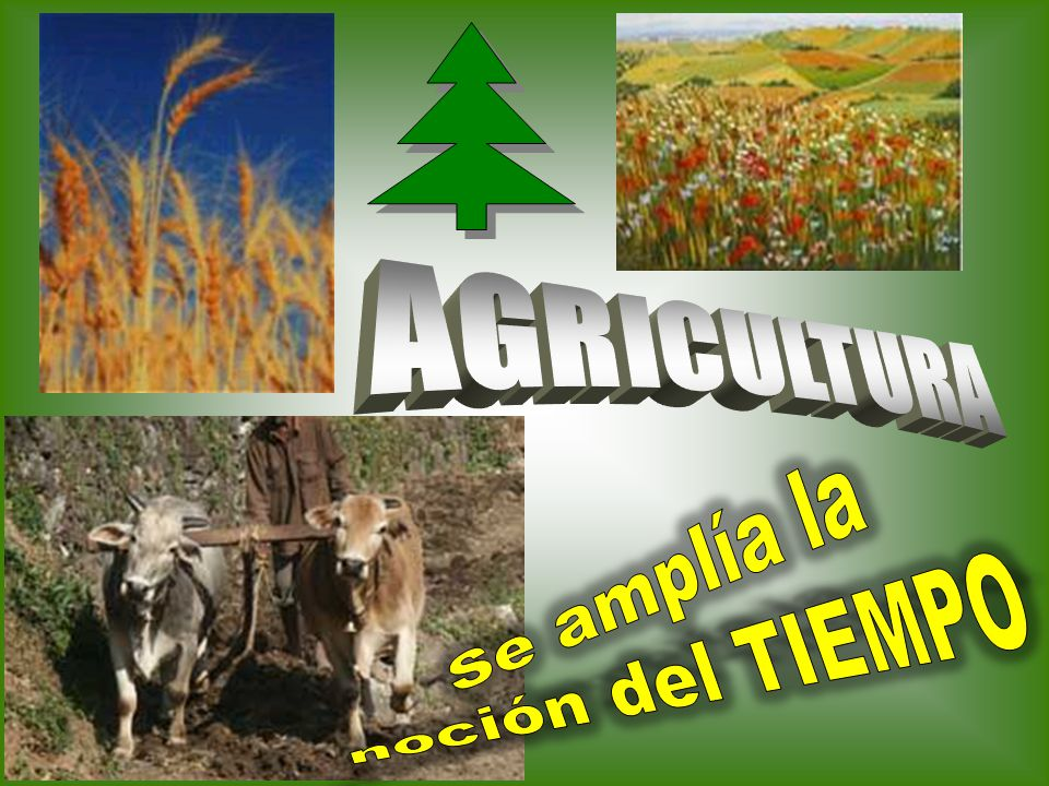 AGRICULTURA Se amplía la noción del TIEMPO