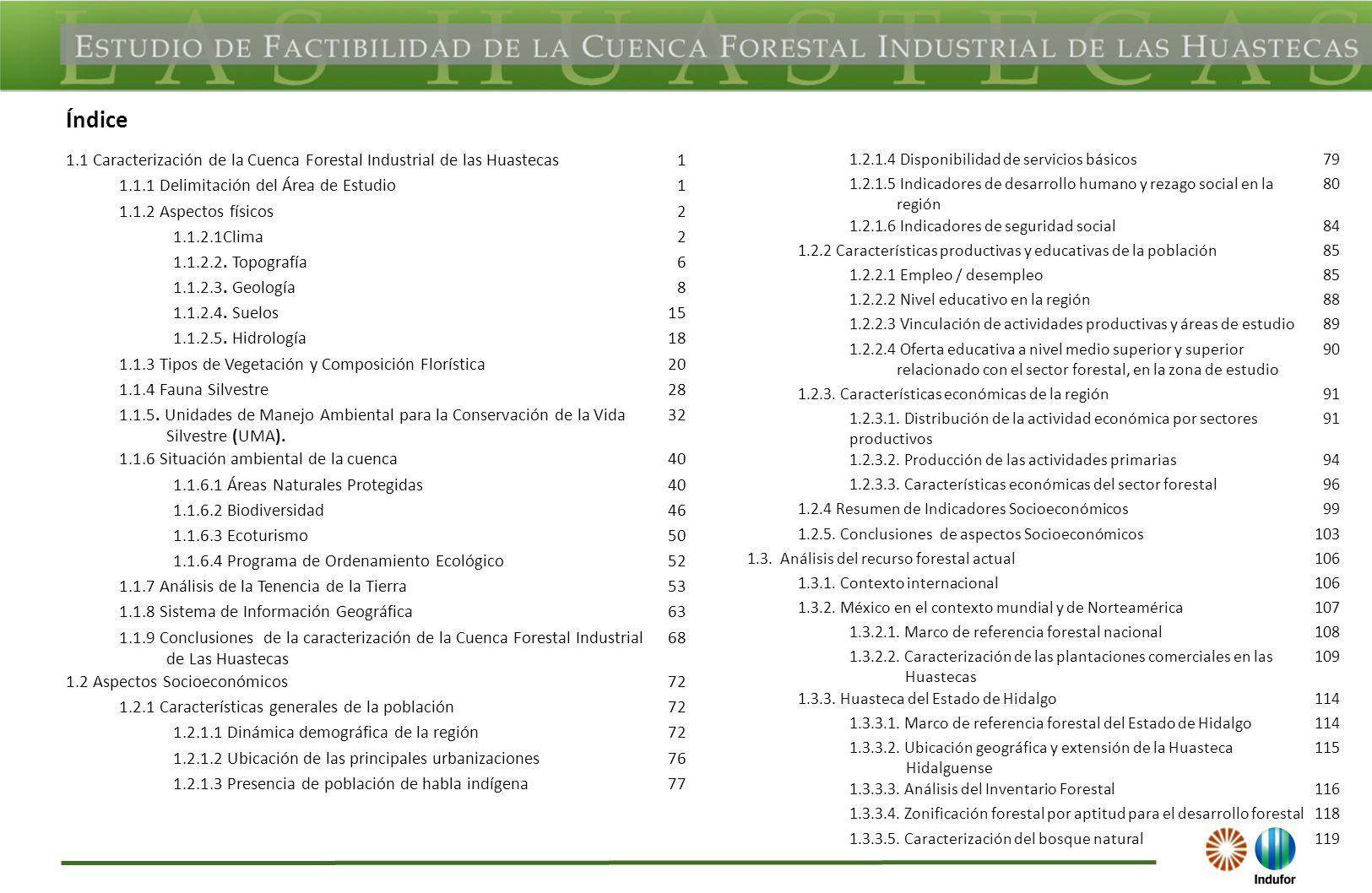 Índice 1.1 Caracterización de la Cuenca Forestal Industrial de las Huastecas. 1. 1.1.1 Delimitación del Área de Estudio.