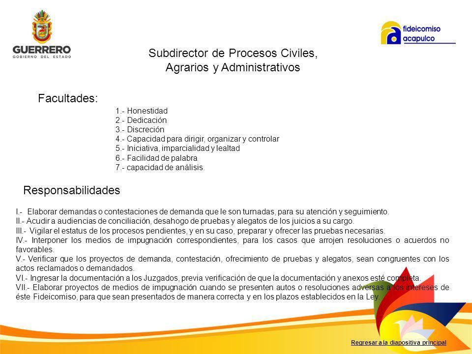 Subdirector de Procesos Civiles, Agrarios y Administrativos
