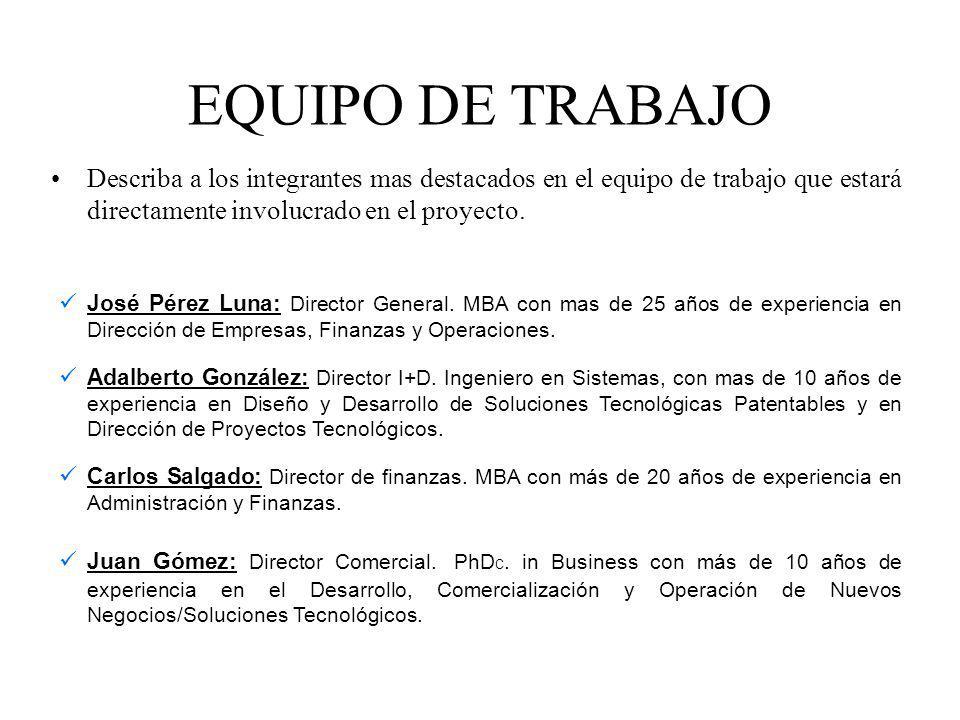 EQUIPO DE TRABAJO Describa a los integrantes mas destacados en el equipo de trabajo que estará directamente involucrado en el proyecto.
