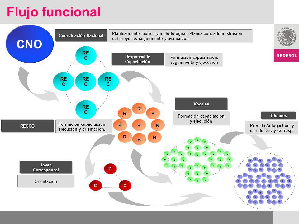 Flujo funcional CNO REC R