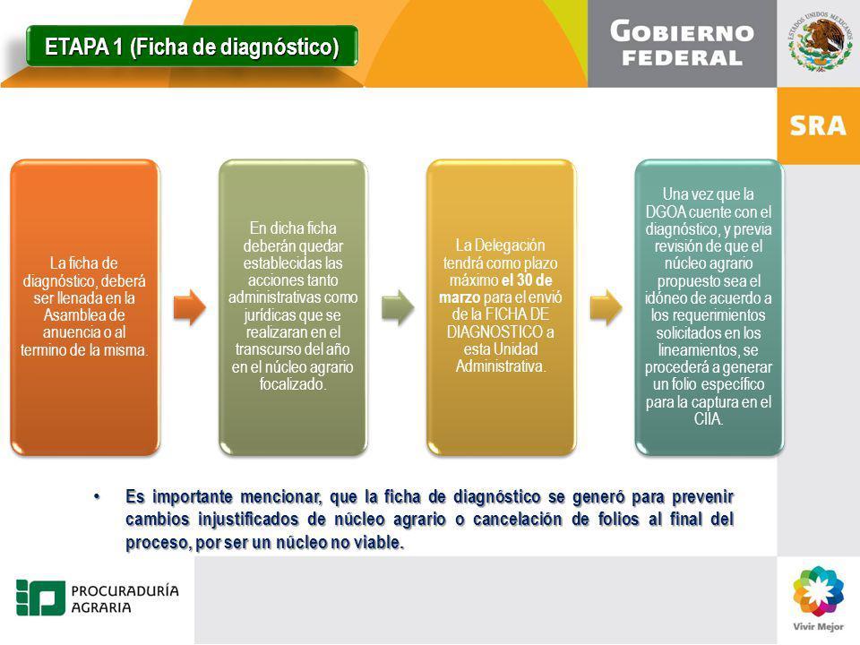 ETAPA 1 (Ficha de diagnóstico)
