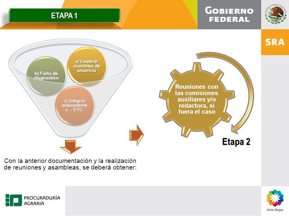 ETAPA 1 Reuniones con las comisiones auxiliares y/o redactora, si fuera el caso.