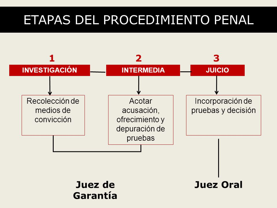 ETAPAS DEL PROCEDIMIENTO PENAL