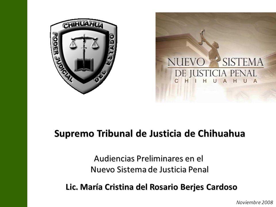 Lic. María Cristina del Rosario Berjes Cardoso