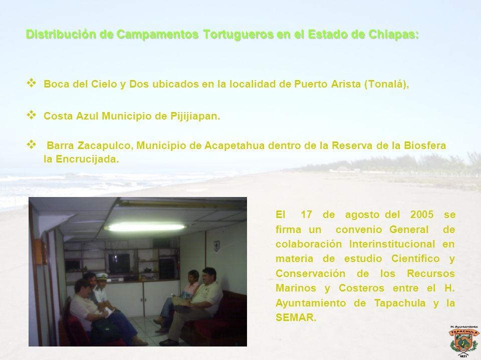 Distribución de Campamentos Tortugueros en el Estado de Chiapas: