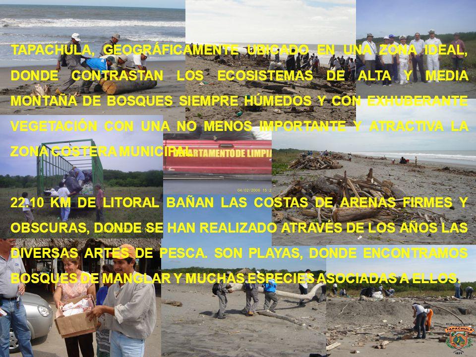 TAPACHULA, GEOGRÁFICAMENTE UBICADO EN UNA ZONA IDEAL, DONDE CONTRASTAN LOS ECOSISTEMAS DE ALTA Y MEDIA MONTAÑA DE BOSQUES SIEMPRE HÚMEDOS Y CON EXHUBERANTE VEGETACIÓN CON UNA NO MENOS IMPORTANTE Y ATRACTIVA LA ZONA COSTERA MUNICIPAL