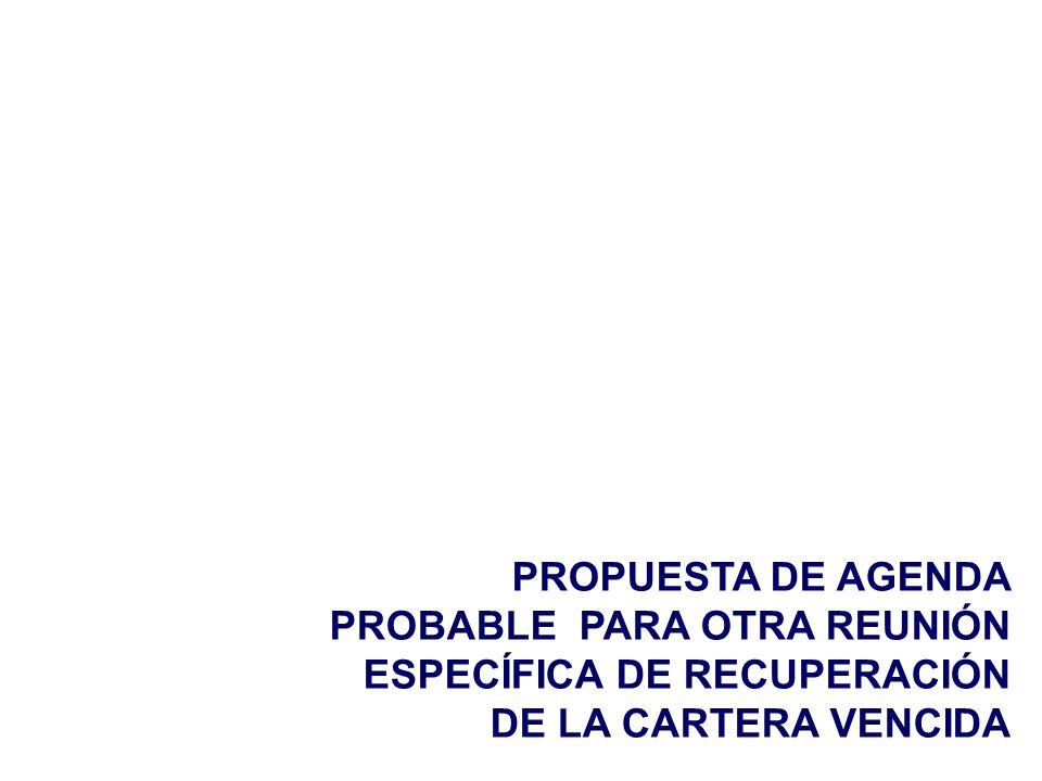 PROPUESTA DE AGENDA PROBABLE PARA OTRA REUNIÓN ESPECÍFICA DE RECUPERACIÓN DE LA CARTERA VENCIDA